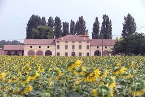 Corte Costavecchia